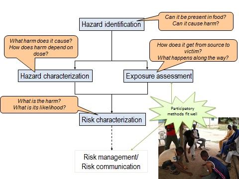 Codex Alimentarius Commission framework for risk assessment