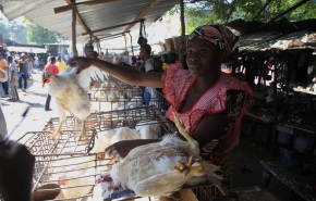Despite contamination concerns, Africa must embrace 'wet markets' as key to foodsecurity