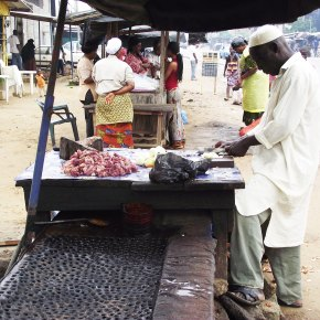 Experts call on African countries to prioritize food safety in urban food markets